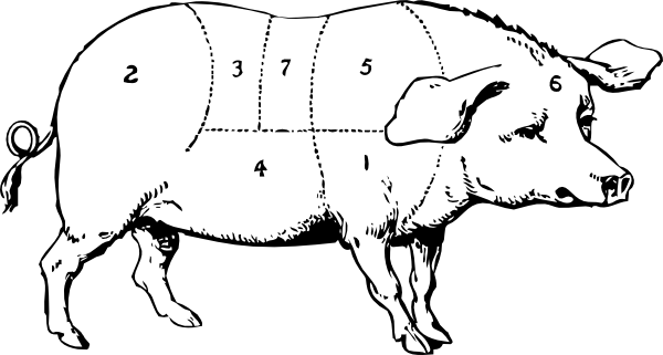 1325626720656532254Labeled Pig Drawing.svg.hi
